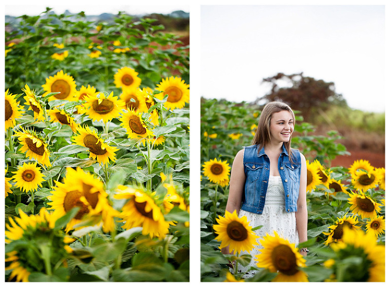 sunflower field senior photos by Hawaii Photographer