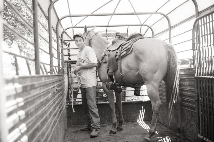 Marti and his horses